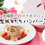 <茨城県×イイジマ 肉のコラボ>茨城の旨味が一輪のバラに「茨城そだちハンバーグ」